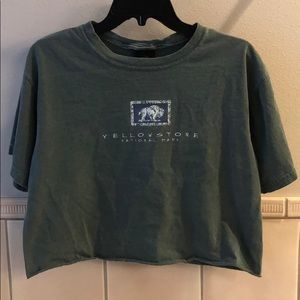 Vintage Yellowstone National Park bison crop top